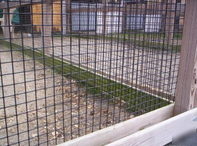 Welded Wire Fence 1 5 X 1 5 12 5g 48 Quot X 100 Pvc Black